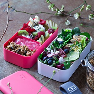Monbento Lunch Boxes Pink and Purple